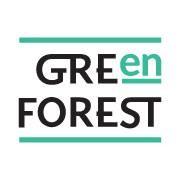 Green Forest - курси англійскої мови у Львові